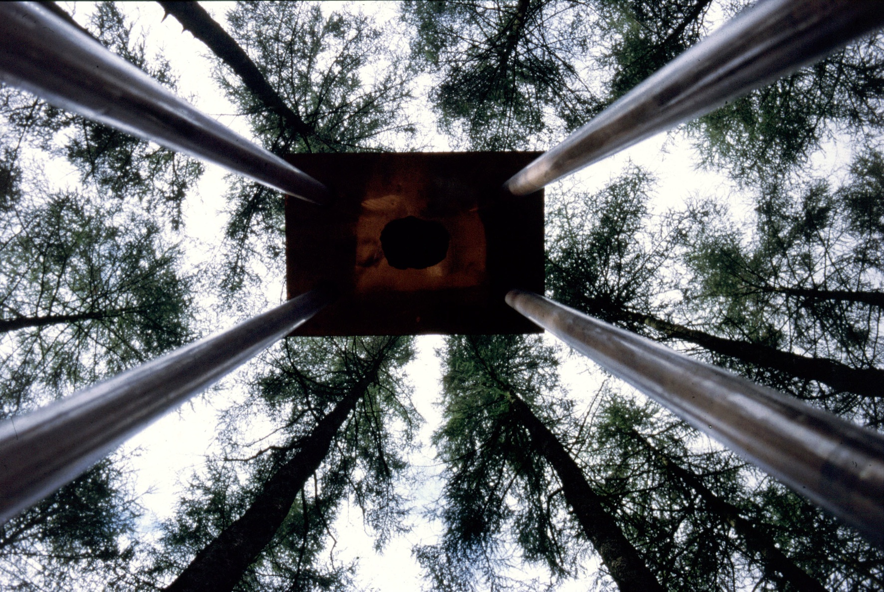 SZDTorment of the metals, Grizedale Forest. view from below